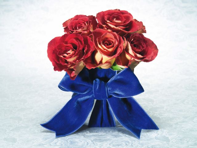 Holidays   International Womens Day Roses with a bow on March 8 057383