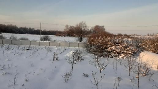 Термометр на биостанции «Маринино» зафиксировал рекордные -31 °C - фото 2