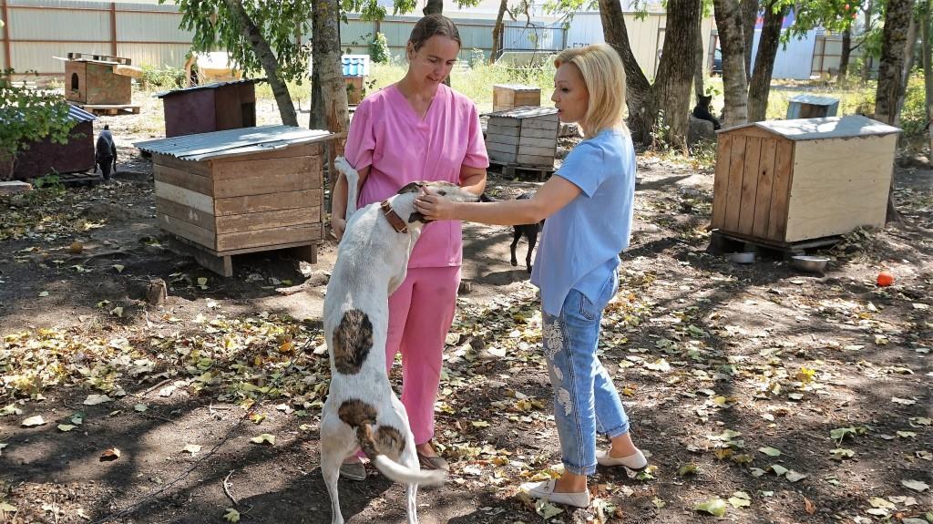 Ольга Тимофеева: «Прямые поручения Президента по животным – это общая победа законодателей и зоозащитников» - фото 2