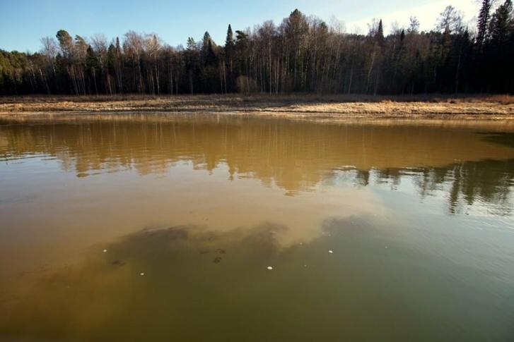 Из-за загрязнения реки Кувай в Красноярском крае проверяют деятельность золотодобытчиков - фото 2