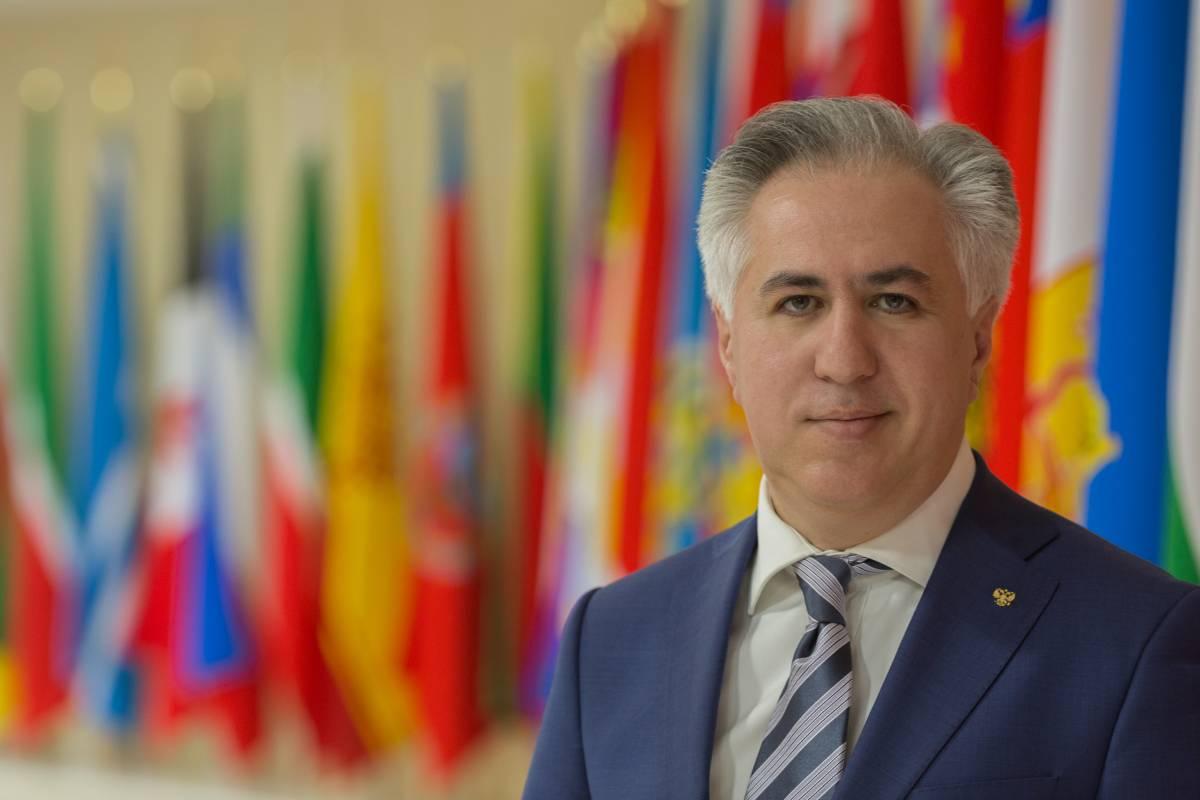 Директор НП «Центр зеленых стандартов» выступил на заседании Рабочей группы БРИКС - фото 1
