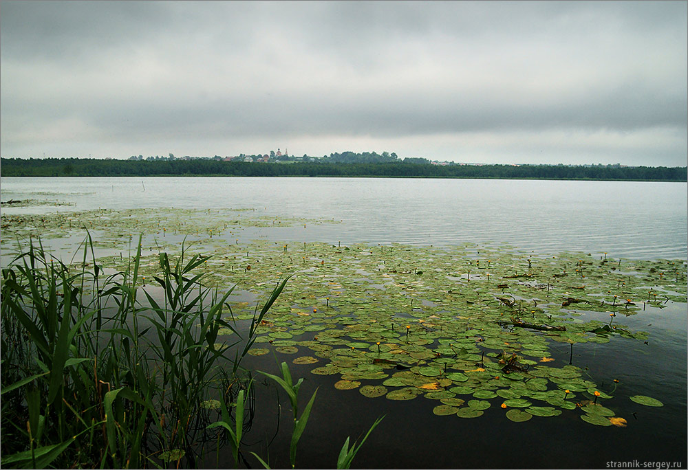 Дмитровском районе озеро нерское рыбалка