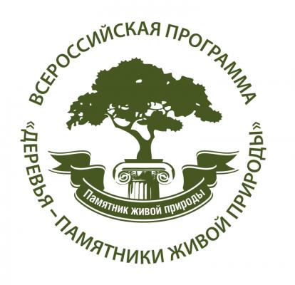 Всероссийская программа «Деревья – памятники живой природы» в действии - фото 1