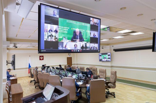 При Минприроды России будет создана межведомственная рабочая группа по Стратегии развития лесного комплекса - фото 1